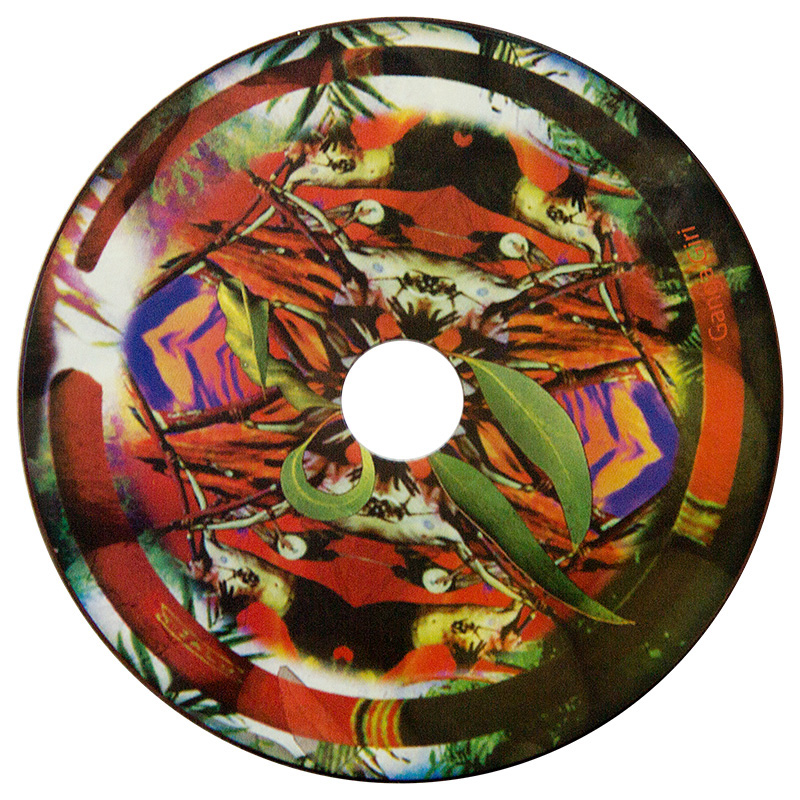 Ganga Giri Termite Grooves Disc
